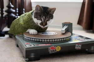 cats_turntable_02small