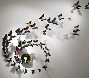 butterfly26